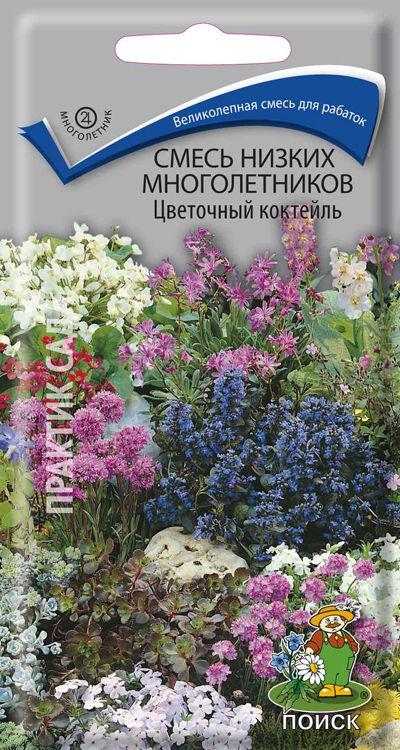 Многолетние Цветы Купить В Интернет Магазине